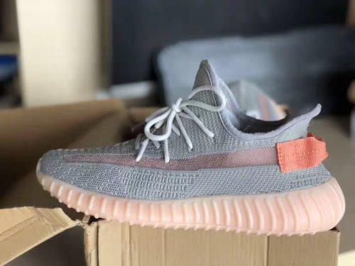 Yeezy  350 Boost V2 True Form photo review